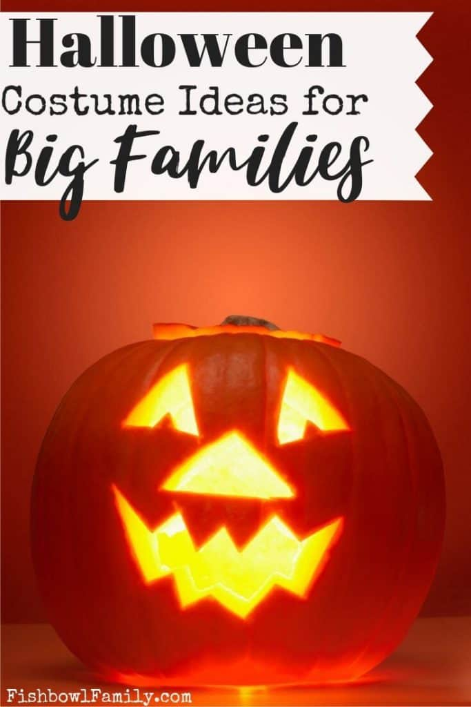Halloween Costumes for Big Families